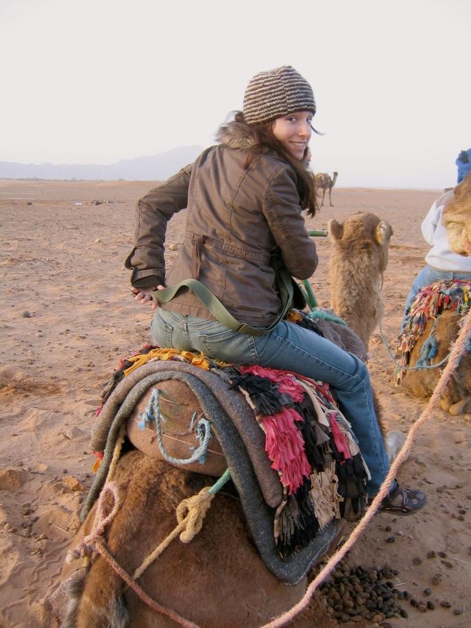 Sahara Mel Camel